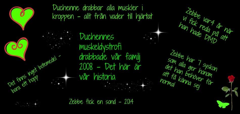 Zebbes kamp. När Zebbe var 4 år fick vi reda på att han hade Duchenne MuskelDystrofi. Det här är vår berättelse.